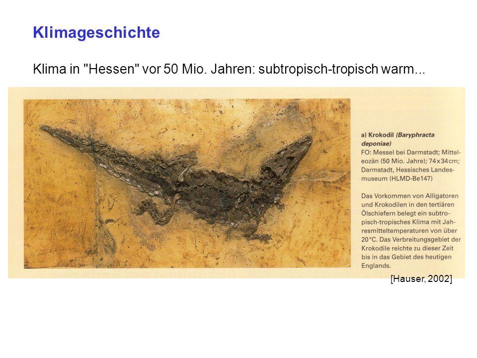 Klimageschichte Klima in Hessen vor 50 Mio. Jahren: subtropisch-tropisch warm... [Hauser, 2002]
